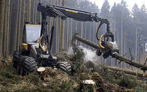 forestry technologies